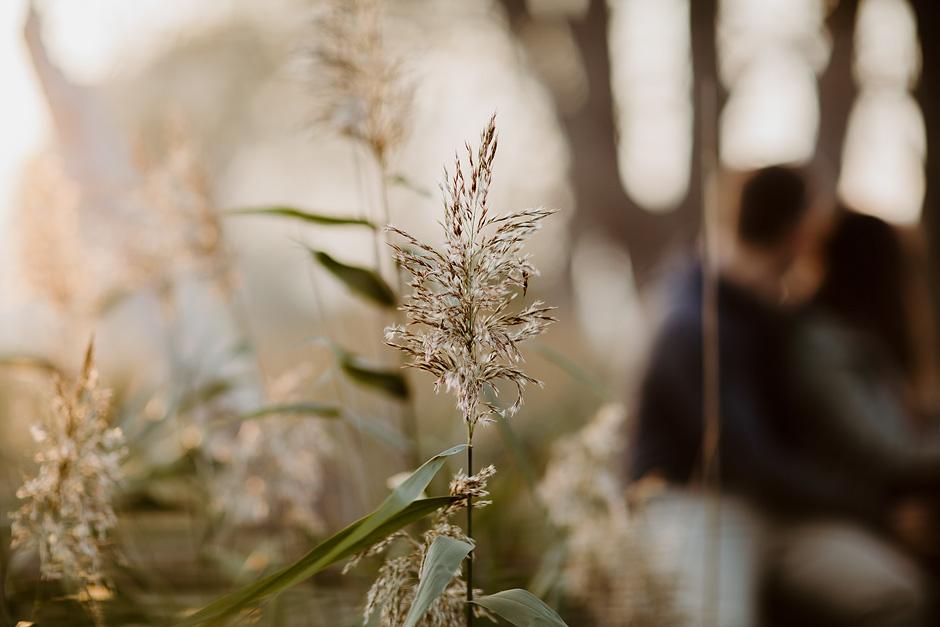 fotograf_harz_benkruse_030