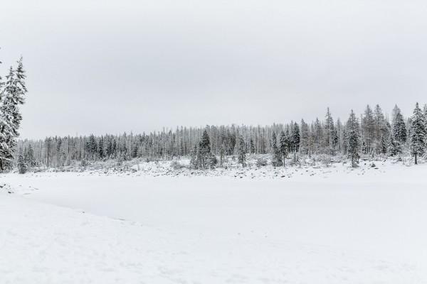 winterhochzeit_harz_006
